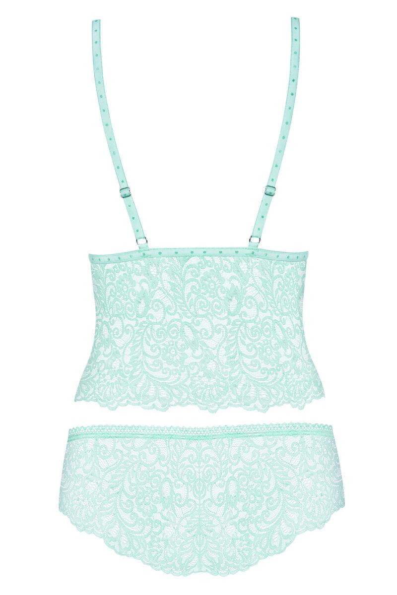 obsessive-delicanta-top_panties-back-packshot